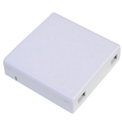 2-CORE FIBER WALLPLATE